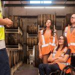 障害者の就職件数が過去最高!雇用率が年々増加している理由